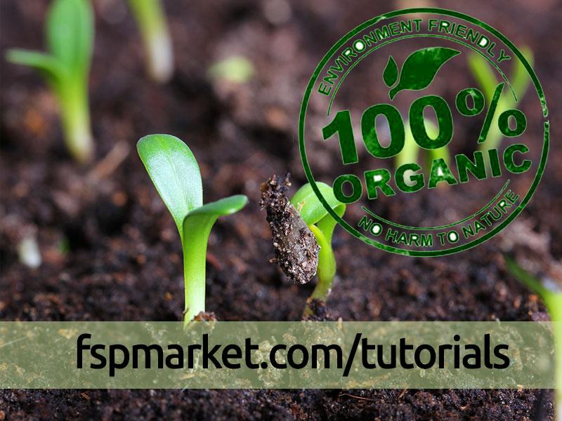 ده دلیل مهم برای روی آوردن به کشاورزی ارگانیک