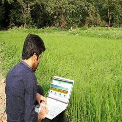 فروشگاه آنلاین کشاورزی