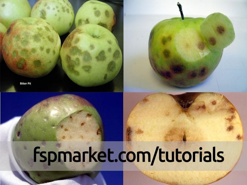 نشانه های عارضه Bitter pit در روی میوه ی سیب