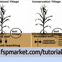 آغاز خاکورزی برای محصولات پاییزه و شناخت انواع سیستم های خاکورزی حفاظتی