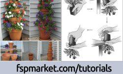 آموزش تصویری کاشت گل در گلدان
