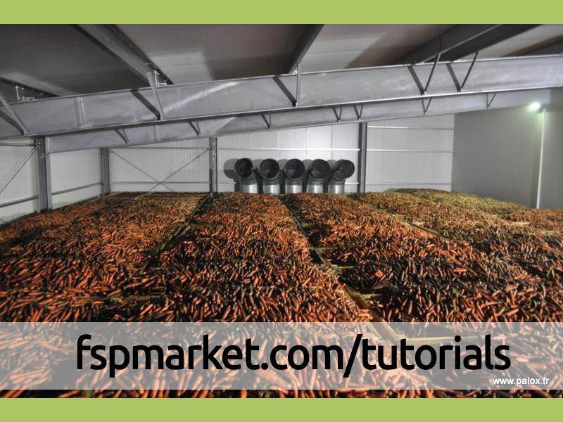 انبار هویج