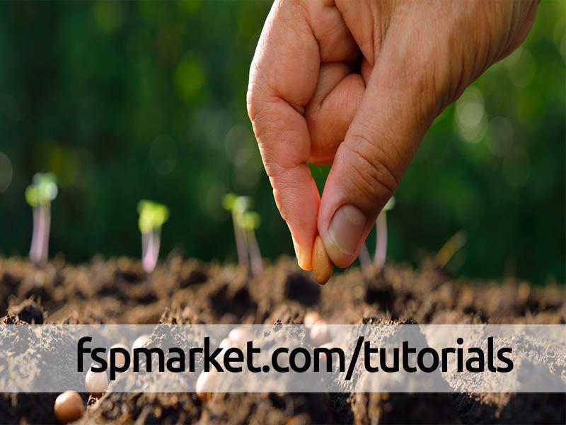 انواع روش های کاشت بذر