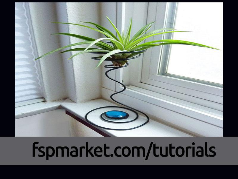 پایه گیاه هوازی