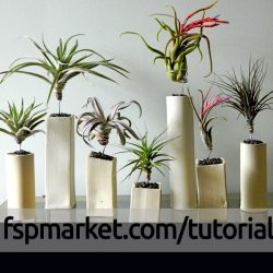 دیزاین با گیاه هوازی